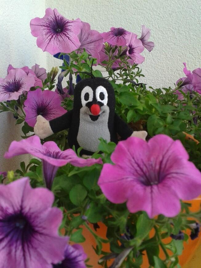 Узнаете нашего друга детства - Кротика ? :-)  www.gidvprage.com