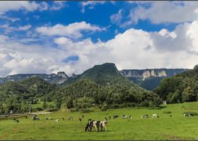 Ла Гарроча - это природный парк вулканической зоны, который является одним из красивейших мест в Испании. Дорога идет по красивому лесистому ландшафту, подъемами и спусками к кратерам и   завораживающим видам долины.