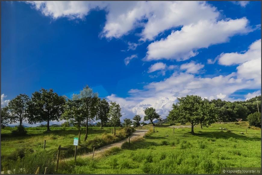 В парковой зоне по лесу вокруг вулканических холмов проложено несколько пешеходных маршрутов,отмеченных красно-белыми полосами на камнях и деревьях. В густых лесах Гаррочи кипарисы перемежаются елями,  буками и оливой.