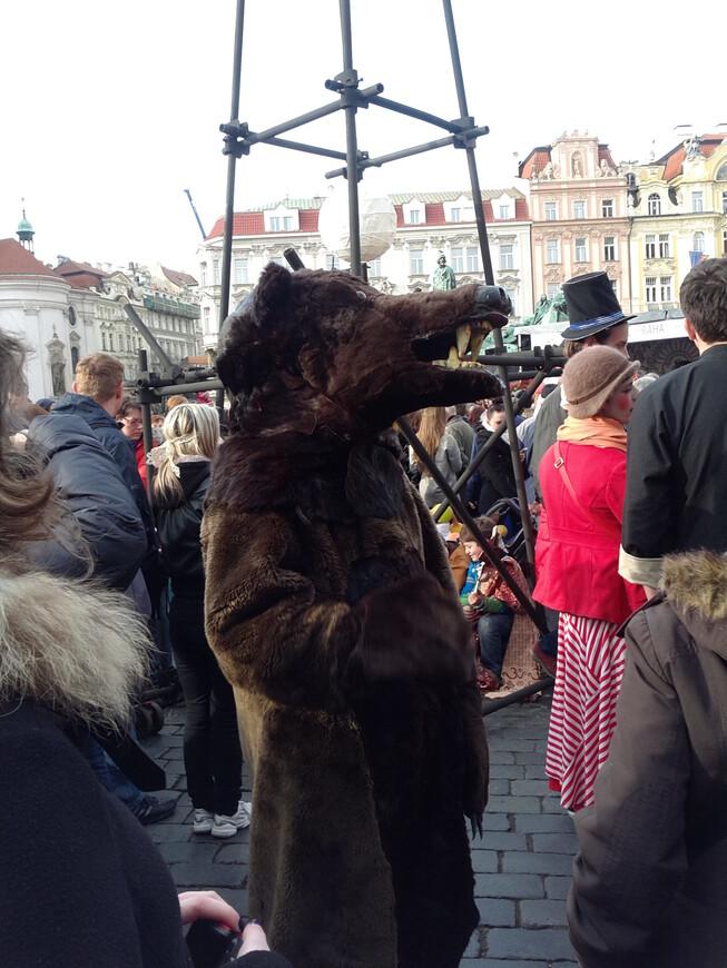 В Праге можно встретить медведя !  www.gidvprage.com