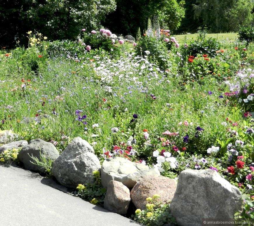 Цветы в Покровском монастыре