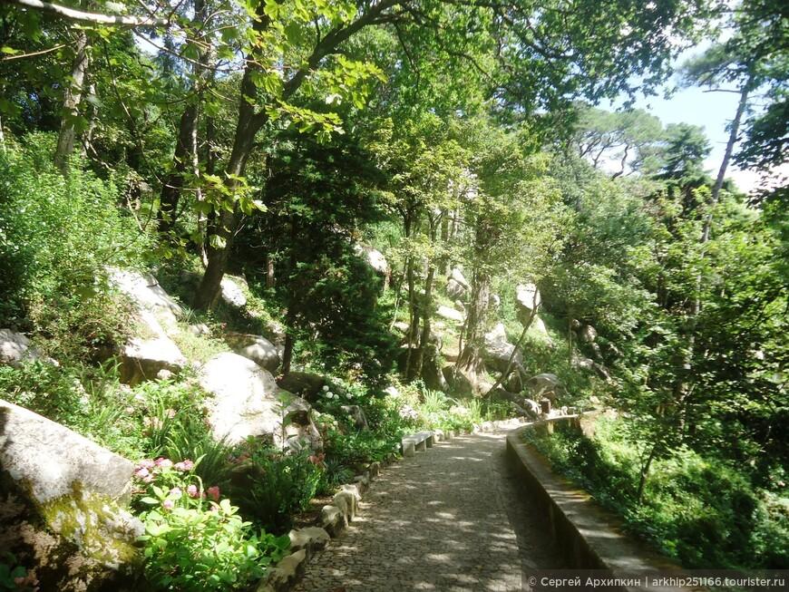 К замку ведет тропа через густой лес