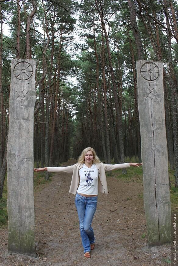 Вход в Танцующий лес.