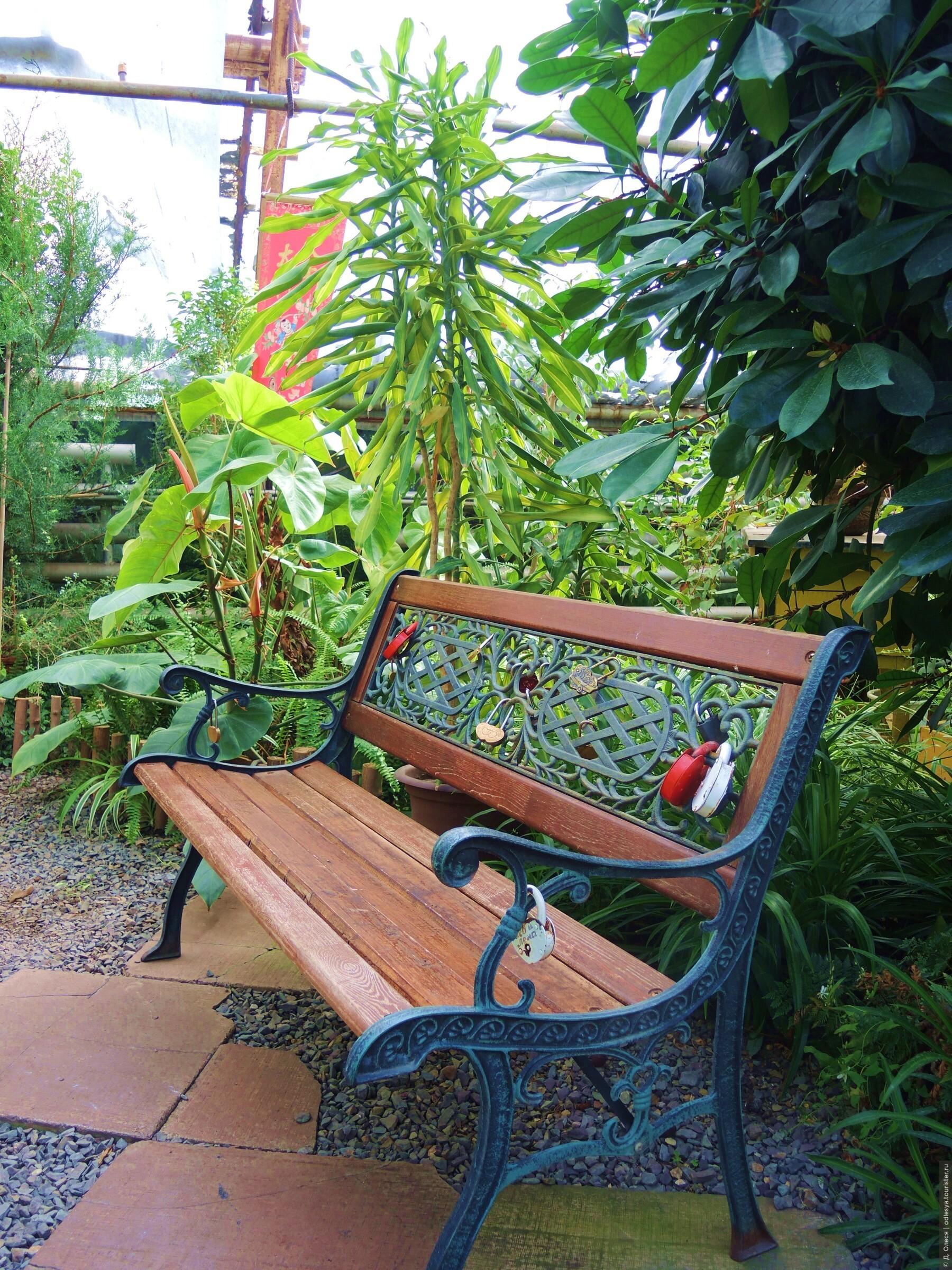скамейка влюблённых, Ботанический сад