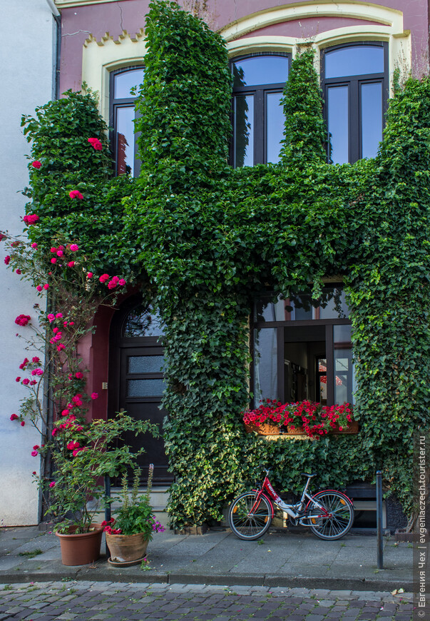 Но главное в Фиртеле — это дома. Они так и называются — бременские дома.