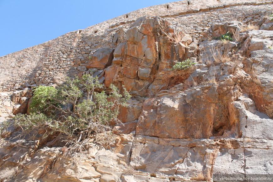 Крит 1195.jpg