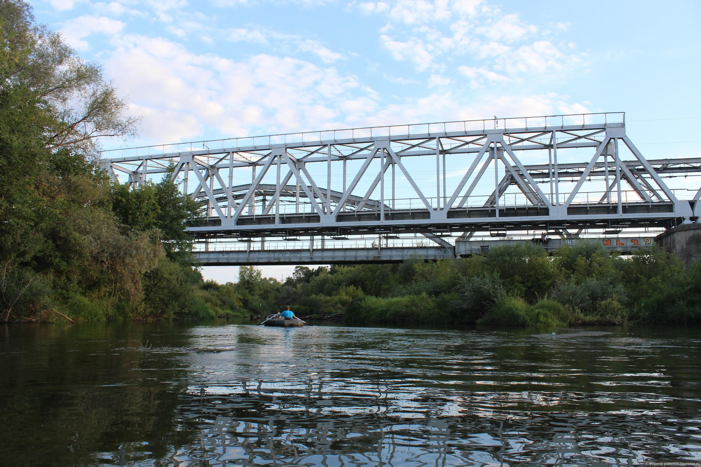 собак брянские мосты фото вудли