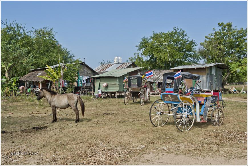 Шли мы шли, и тут набрели на какое-то экзотичное местечко, где отстаивались лошади и кареты.
