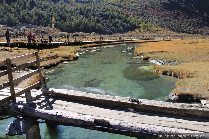 Луга Ложун оборудованы деревянными мостиками и дорожками, это здорово, иначе многочисленные паломники давно бы их затоптали.