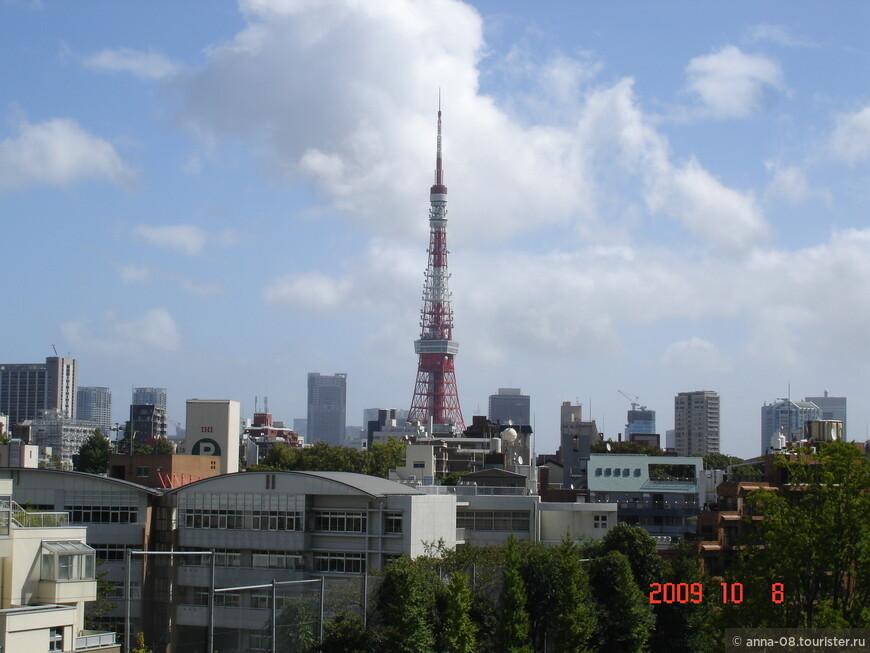 Отсюда открывается прекрасный вид на телебашню. Ее высота 332, 6 метра, на момент строительства в 1958 году она была самым высоким стальным сооружением в мире. Сейчас это туристическая достопримечательность. В 2011 году в Токио построили новую телебашню высотой 634 метра и теперь уже она - самая высокая телебашня в мире.