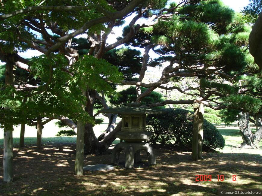 В 1654 году эти земли осушили, а позже 6-й сёгун Токугава забрал эту землю себе, перестроил и стал отдыхать здесь с семьей.