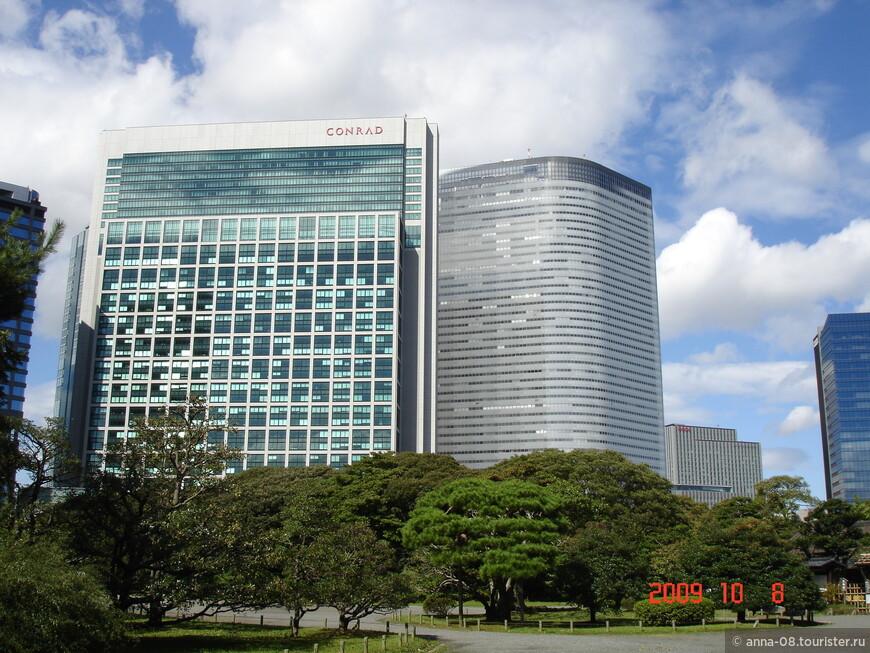 На фоне небоскребов деревья кажутся маленькими. Здесь полностью ощущаешь контраст тишины и спокойствия японского сада с небоскребами огромного мегаполиса.