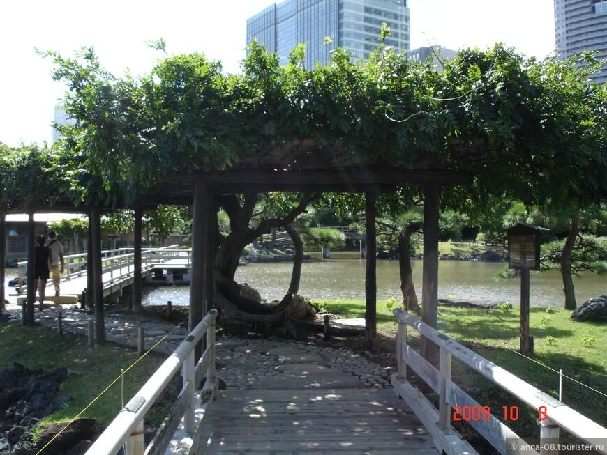В 1945 году парк Хамарикю был преподнесен в качестве подарка правительству Токио от Императорского двора и стал общественным парком, был открыт для доступа публики.