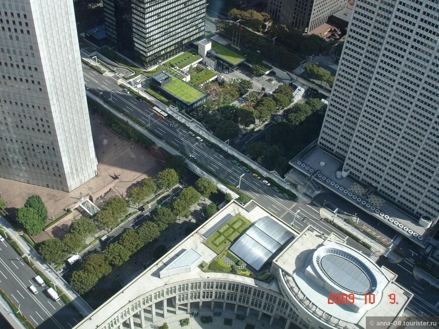 В Токио много зелени, просто за громадами небоскребов ее трудно увидеть.