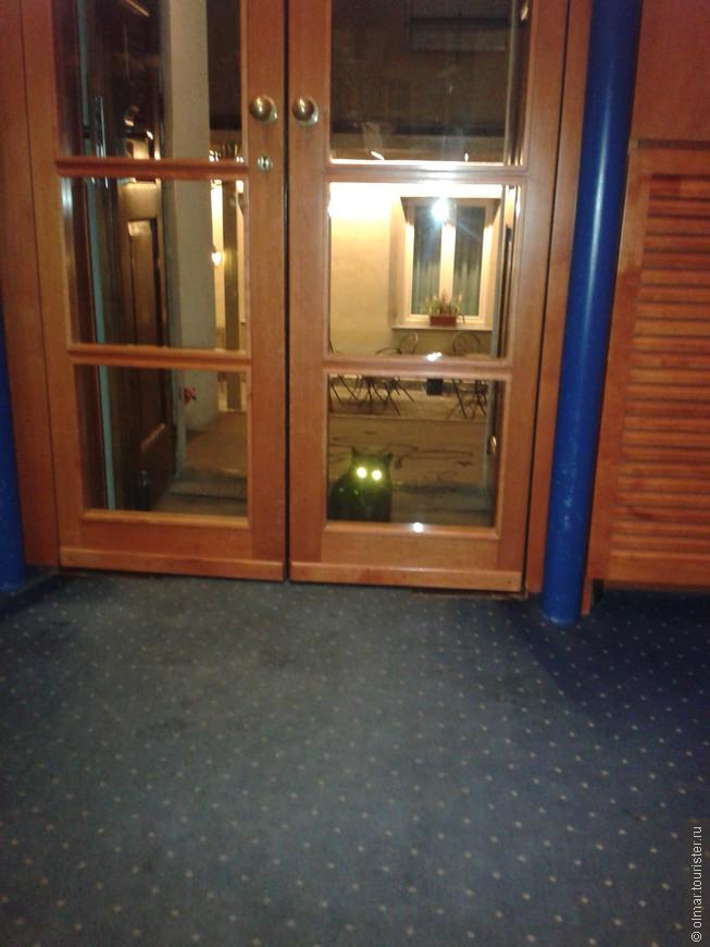 Вход в отель, охраняет сторожевой кот!