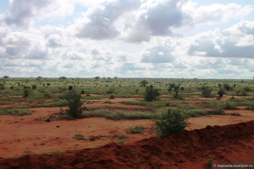 пейзажи местами достаточно пустынны - и животные хорошо просматриваются