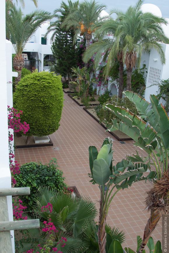 Вид с крыши (террасы над номером) на главную аллею
