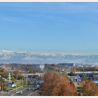 из многих окон ташкентцев ,в ясную погоду, хорошо видны горы.