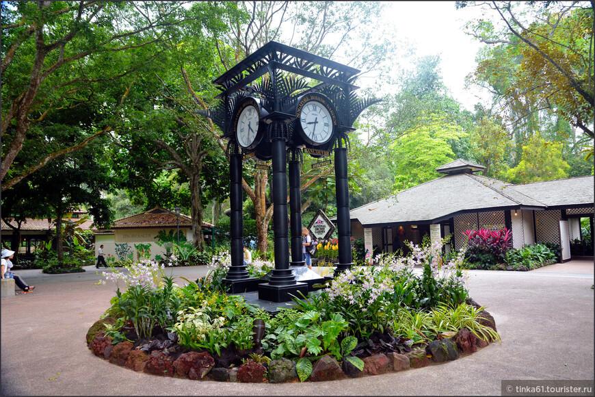 Часы показывают время в  Сингапуре и еще в  нескольких городах.