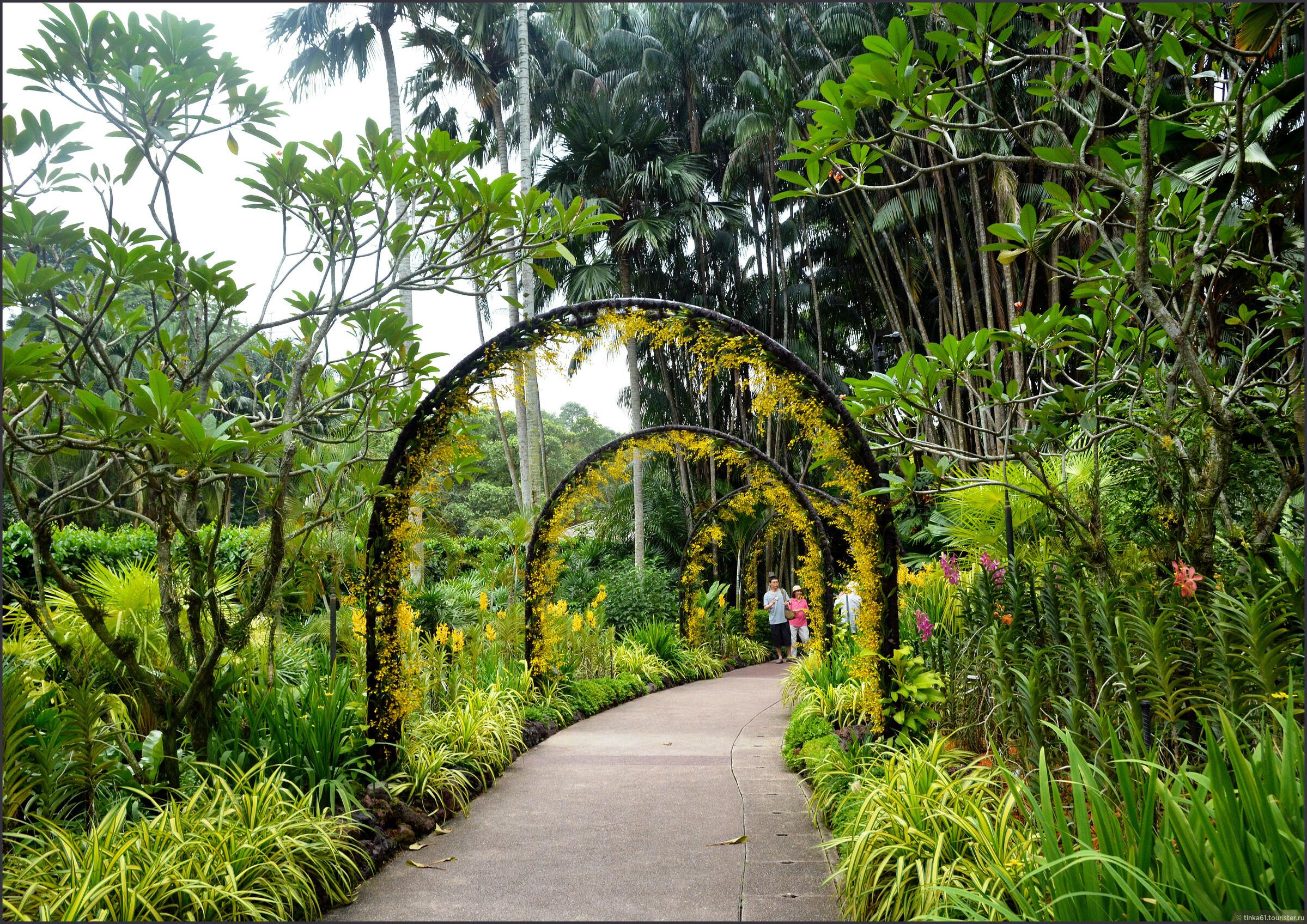 должен фиксироваться фото тенелюбивых садов сингапура причиной