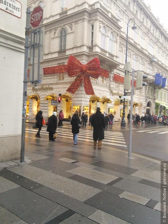 Вена: основы безопасности