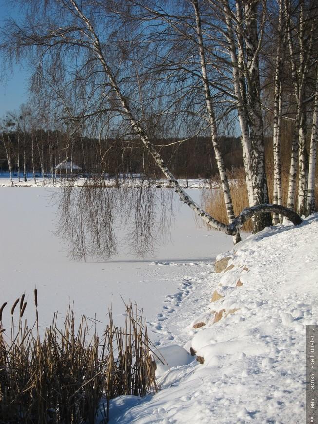 Застывшее озеро. Шумел камыш, деревья гнулись...