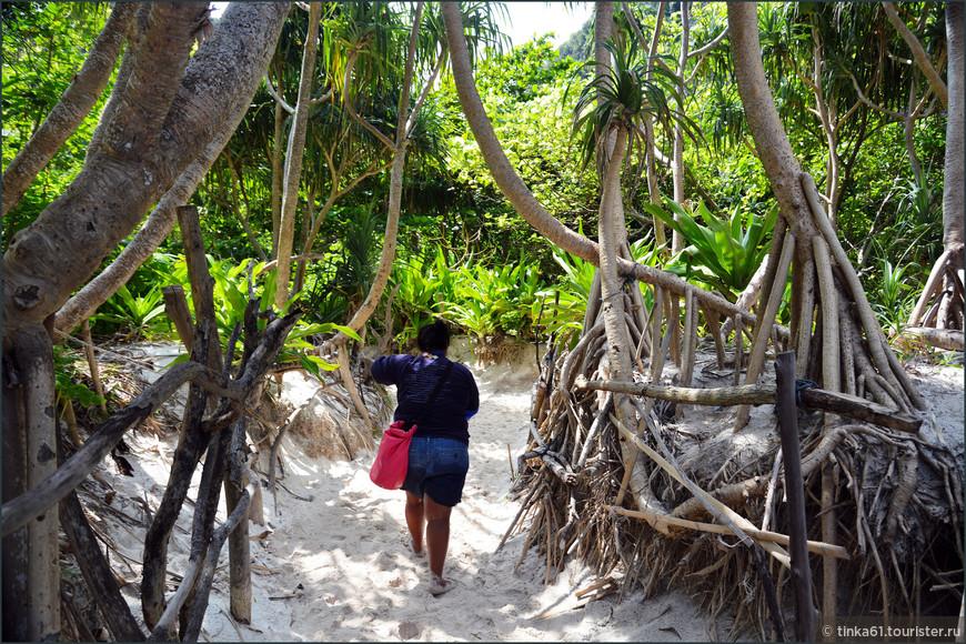 """Тропинка вглубь острова, где ступала нога Ди Каприо. Знаменитый фильм """"Пляж"""" снимали именно здесь."""