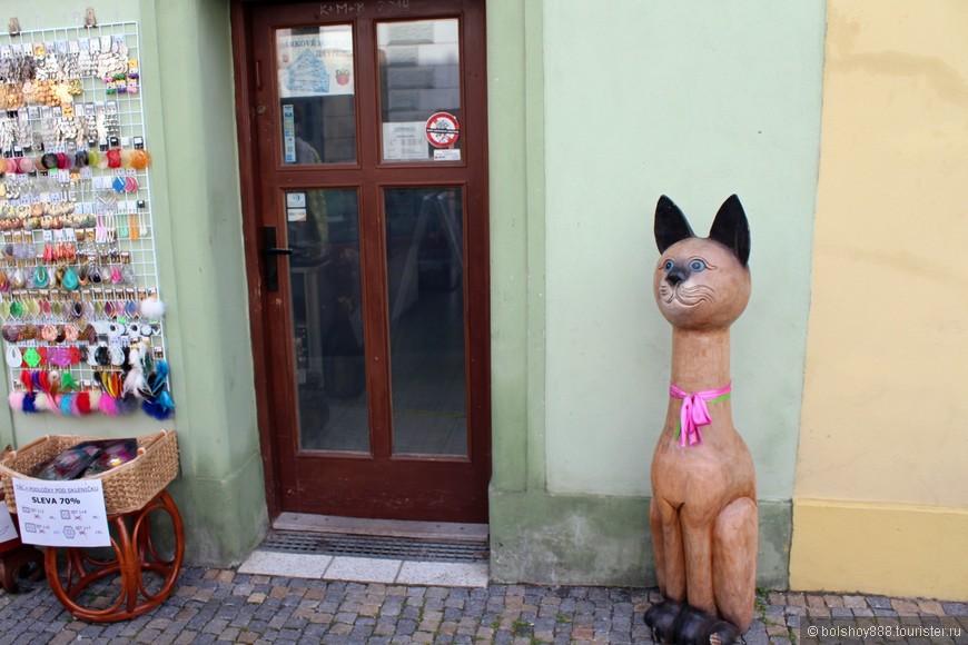 Милый котик возле сувенирного магазинчика