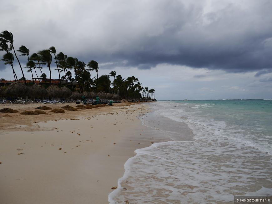Каждое утро водоросли убираются с пляжа.