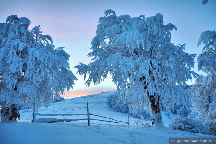 Зима в Беларуси.