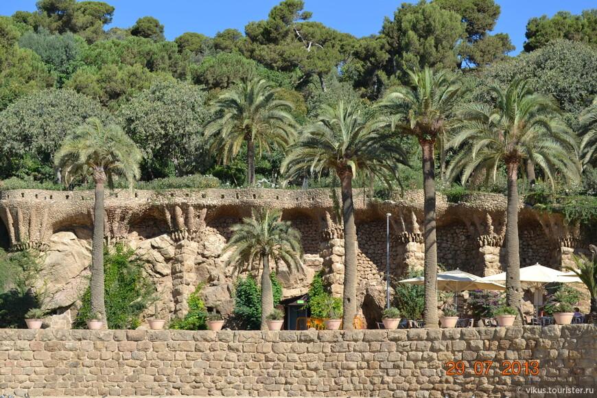 Каменные и живые пальмы.