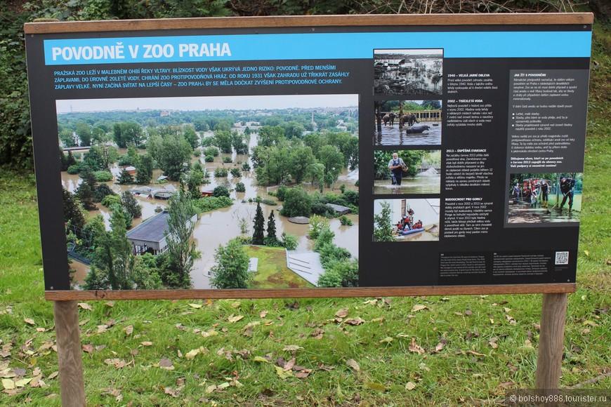 Наводнение в Праге в 2002 году.Вот как выглядел зоопарк....
