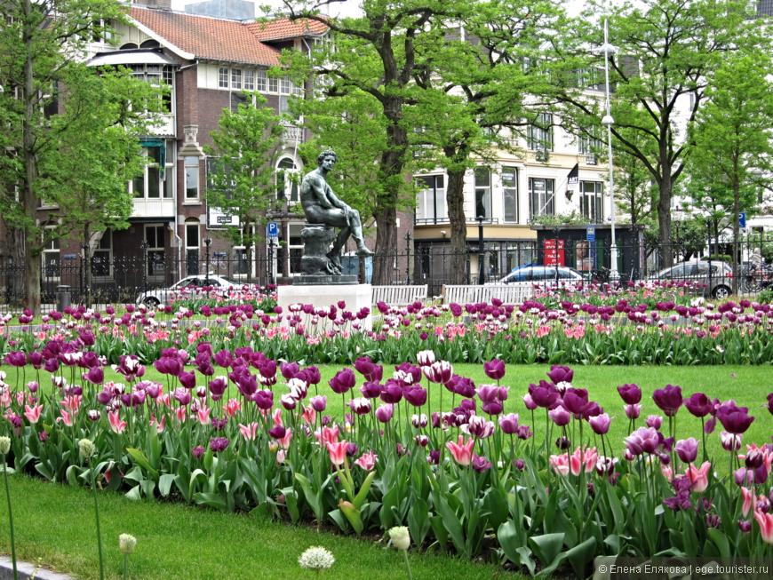 Город каналов, велосипедов и тюльпанов