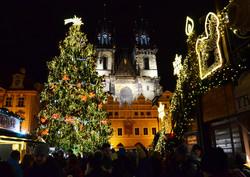 Главную новогоднюю елку Праги скормят слонам