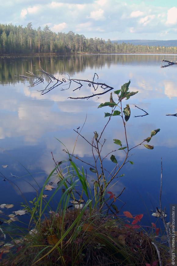 На обратном пути сломалась машина, и пока её ремонтировали, я совершенно случайно в лесу наткнулась на вот такое вот чудо-озеро...