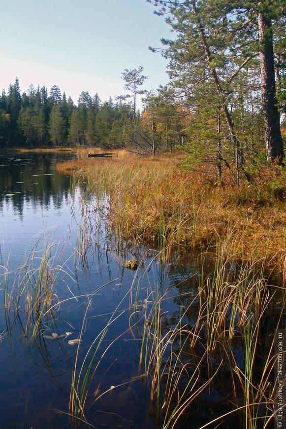Утром пошли умываться к ближайшему озеру... Погода продолжала радовать...
