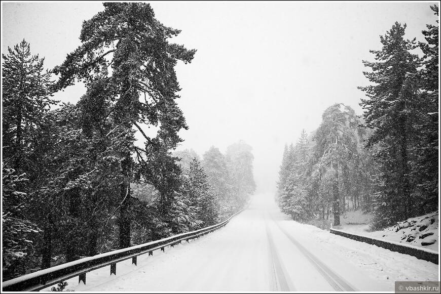 Троодос. Выпал снег. На летней резине было очень стремно))