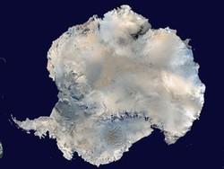 С путешествующими по Антарктиде депутатами Госдумы появилась связь