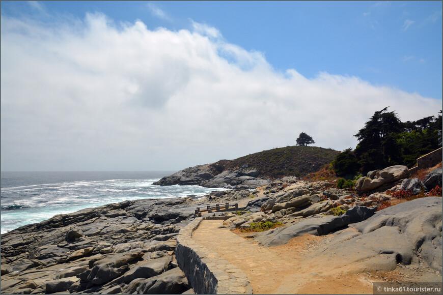 Прогулка вдоль этого отрезка побережья занимает в среднем  полчаса.