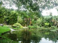 Район Лагуны и Ботанического сада в Рио
