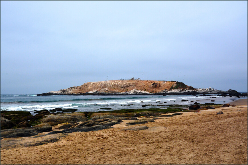 Главная природная достопримечательность в окрестностях Сапальяра - Остров пингвинов в местечке Качагуа.