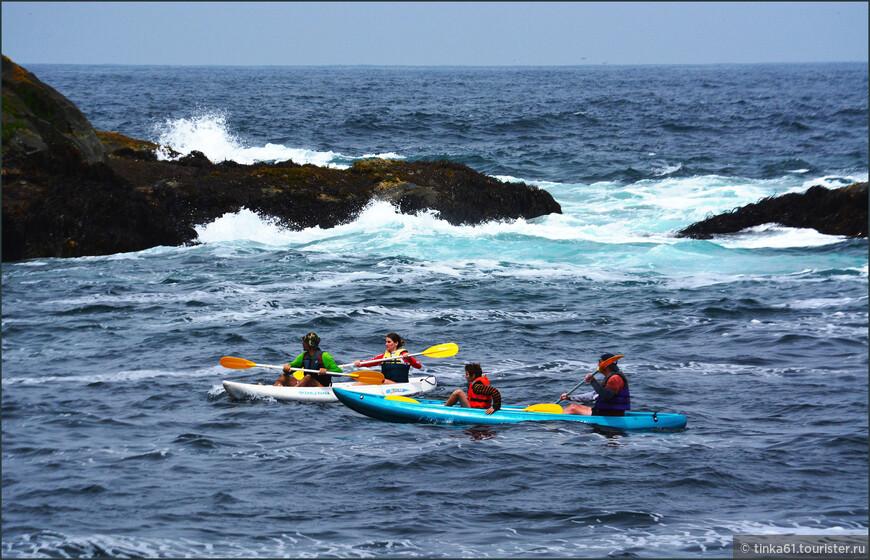 На таких лодках можно подплыть к пингвинам совсем близко.