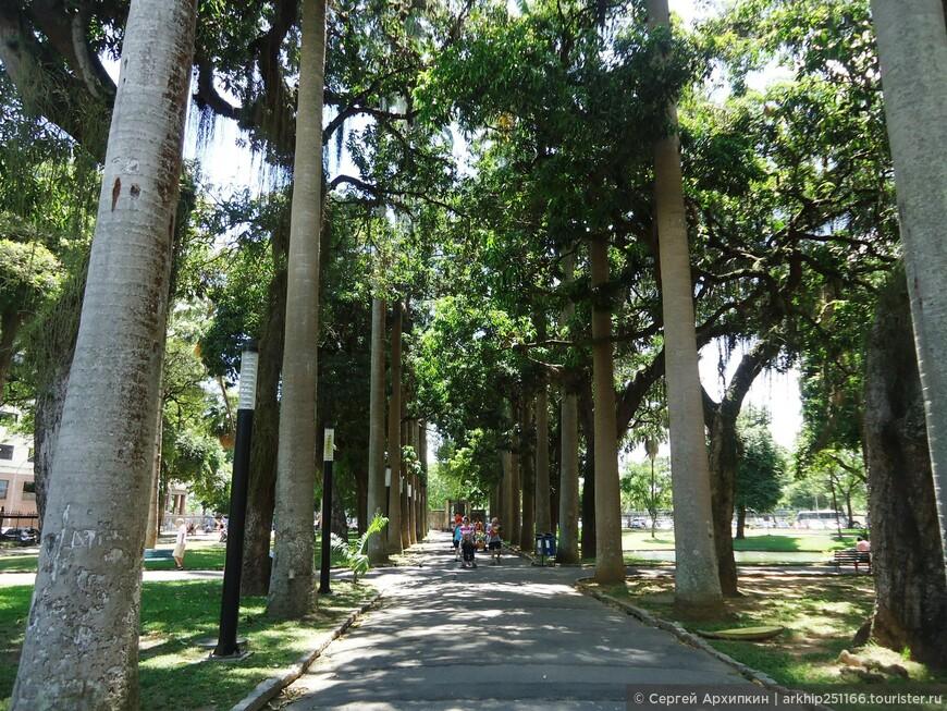 Сад у Республиканского музея в Рио