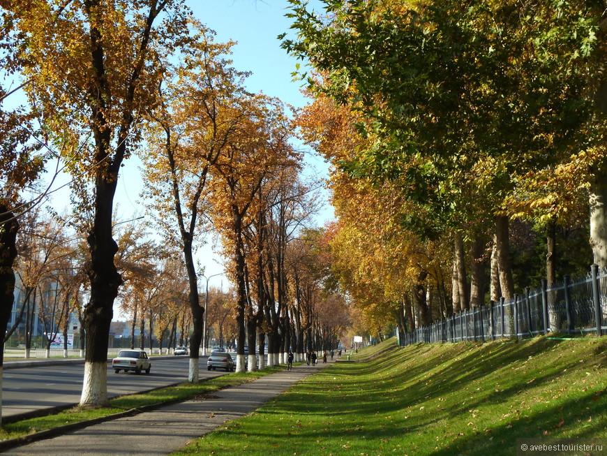 В Ташкенте мне больше всего нравятся весна и осень. Золотая осень в Узбекистане очень красивое, продолжительное и феерическое зрелище. Город утопает в обрамлении золотых листьев огромных платанов и клёнов. Под ногами шуршащий ковёр из опавших листьев разных цветов и форм.