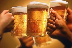 В Чехии пройдет масштабный фестиваль пива