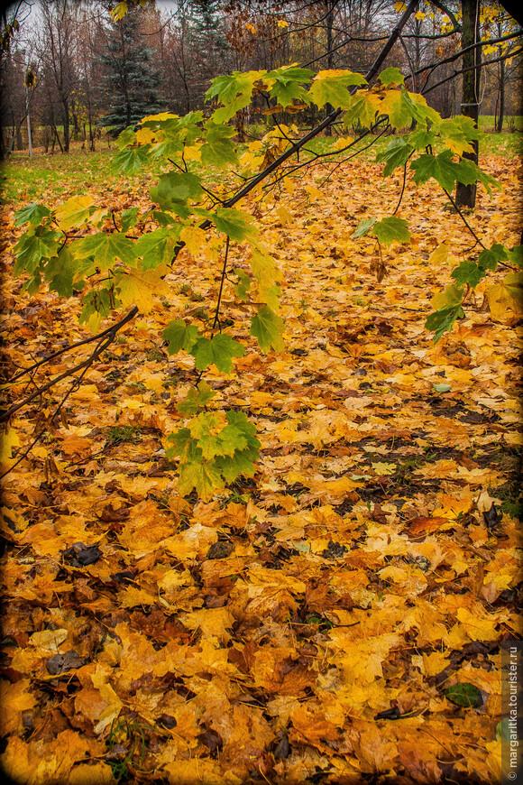 Аксаково-осень'2007 (104).jpg
