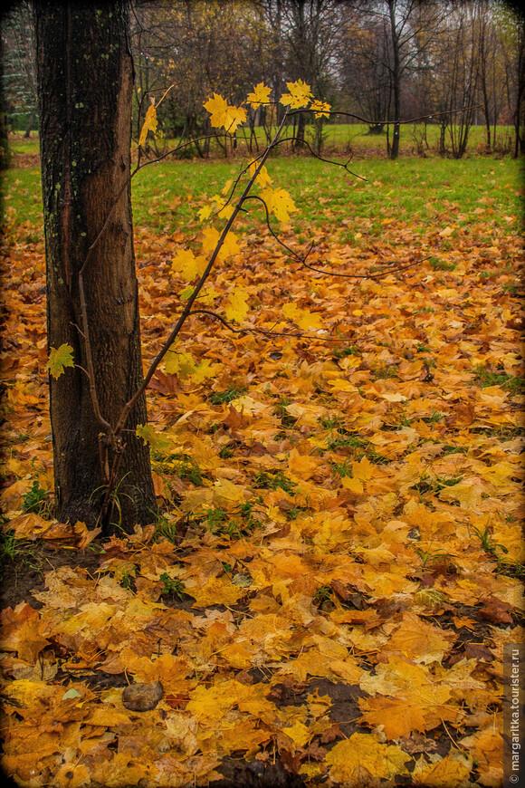 Аксаково-осень'2007 (115).jpg
