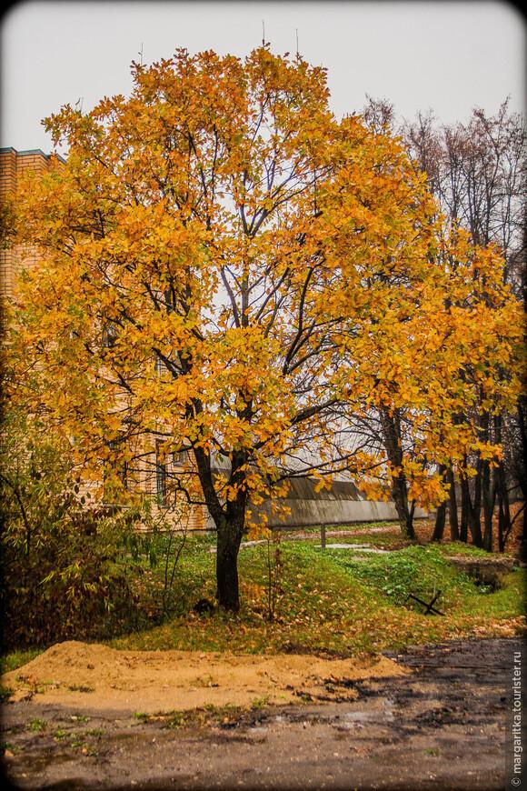 Аксаково-осень'2007 (165).jpg