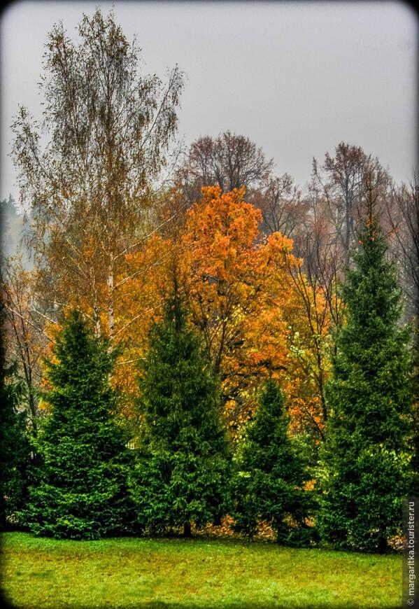 Аксаково-осень (127).jpg