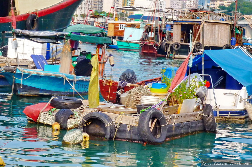 27. Я видел на одном таком плоте собаку, она долго собиралась и прыгала с лодки на лодку, жалко ее стало.